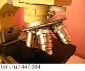 Купить «Микроскоп», фото № 447084, снято 6 сентября 2008 г. (c) Юлия Подгорная / Фотобанк Лори
