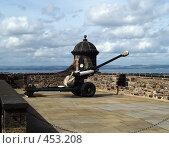 Купить «Пушка», фото № 453208, снято 24 августа 2008 г. (c) Юлия Бобровских / Фотобанк Лори