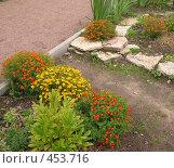 Купить «Ландшафтный дизайн. Оформление парка.», фото № 453716, снято 9 августа 2008 г. (c) Морковкин Терентий / Фотобанк Лори
