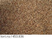 Купить «Речной песок», фото № 453836, снято 2 августа 2008 г. (c) Дмитрий Лагно / Фотобанк Лори