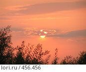Купить «Закат над ивами», фото № 456456, снято 6 сентября 2008 г. (c) Олег Суворов / Фотобанк Лори