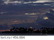 Купить «Восход на Мальдивах. Пальмы, облака», фото № 456884, снято 22 ноября 2007 г. (c) Лев Сатаров / Фотобанк Лори