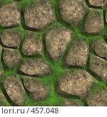 Купить «Камни. Текстура», иллюстрация № 457048 (c) sav / Фотобанк Лори