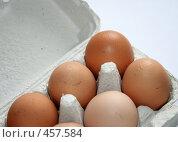 Купить «Куриные яйца в коробке», фото № 457584, снято 4 апреля 2008 г. (c) Юлия Смольская / Фотобанк Лори