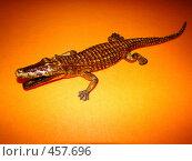 Купить «Статуэтка Крокодил», фото № 457696, снято 6 сентября 2008 г. (c) Александр Яшин / Фотобанк Лори