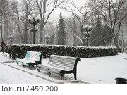 Купить «Лавочка в парке Т.Шевченко (Киев)», фото № 459200, снято 27 января 2008 г. (c) Никончук Алексей / Фотобанк Лори