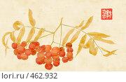 Купить «Гроздь оранжевых ягод рябины с листьями, коллаж с рисунком вручную в основе», иллюстрация № 462932 (c) Tamara Kulikova / Фотобанк Лори