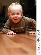 Купить «Отважный путешественник», эксклюзивное фото № 467264, снято 17 сентября 2008 г. (c) Ирина Терентьева / Фотобанк Лори