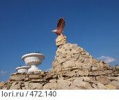Купить «Птица на камнях», фото № 472140, снято 21 сентября 2008 г. (c) Золотовская Любовь / Фотобанк Лори