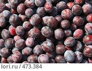 Купить «Свежие сливы. фон», фото № 473384, снято 21 сентября 2008 г. (c) Denis Kh. / Фотобанк Лори