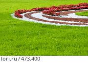 Купить «Красивый газон. Ландшафтный дизайн», фото № 473400, снято 18 сентября 2008 г. (c) Светлана Силецкая / Фотобанк Лори
