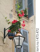 Купить «Уличный фонарь», фото № 473472, снято 25 июля 2008 г. (c) Татьяна Лата / Фотобанк Лори