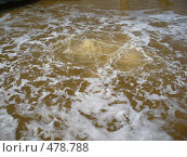 Купить «Гейзер», фото № 478788, снято 20 августа 2008 г. (c) Нетичук Александр / Фотобанк Лори