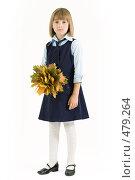 Купить «Ученица с букетом осенних листьев», фото № 479264, снято 25 сентября 2008 г. (c) Лисовская Наталья / Фотобанк Лори