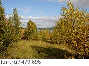 Купить «В осеннем лесу», фото № 479696, снято 11 сентября 2008 г. (c) Владимир Тимошенко / Фотобанк Лори