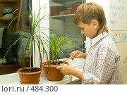 Купить «Мальчик ухаживает за цветами», фото № 484300, снято 29 сентября 2008 г. (c) Ольга Красавина / Фотобанк Лори