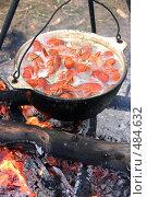 Купить «Раки кипят в котелке», фото № 484632, снято 19 сентября 2008 г. (c) Никонор Дифотин / Фотобанк Лори