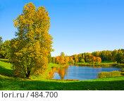 Купить «Осенний пейзаж», фото № 484700, снято 27 сентября 2008 г. (c) Валентин Мосичев / Фотобанк Лори