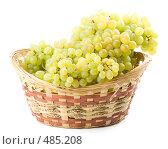 Купить «Свежий виноград в корзинке на белом фоне», фото № 485208, снято 24 августа 2008 г. (c) Мельников Дмитрий / Фотобанк Лори