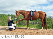 Купить «Девушка -жокей играет с лошадью», фото № 485460, снято 3 июня 2020 г. (c) Александр Fanfo / Фотобанк Лори