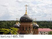 Купить «Купола», фото № 485700, снято 26 июля 2008 г. (c) Алексей Шипов / Фотобанк Лори