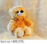 Мягкая игрушка (2008 год). Редакционное фото, фотограф Марина Коваленко / Фотобанк Лори