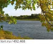 Купить «Осенний пейзаж», фото № 492468, снято 21 сентября 2008 г. (c) Пичугина Виктория / Фотобанк Лори