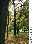 Купить «Михайловский сад осенью. Санкт-Петербург», фото № 493972, снято 4 октября 2008 г. (c) Александр Секретарев / Фотобанк Лори