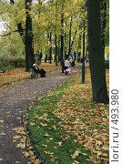 Купить «Михайловский сад осенью. Санкт-Петербург», фото № 493980, снято 4 октября 2008 г. (c) Александр Секретарев / Фотобанк Лори