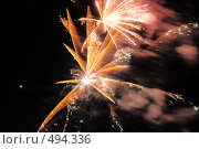 Купить «Фейерверк. Салют. Праздник.», фото № 494336, снято 4 октября 2008 г. (c) Федор Королевский / Фотобанк Лори