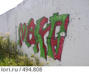 Купить «Граффити в Мичуринске», фото № 494808, снято 14 августа 2008 г. (c) Баева Татьяна Александровна / Фотобанк Лори