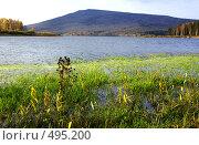 Купить «Вид горы Качканар», фото № 495200, снято 3 октября 2008 г. (c) Дмитрий Лемешко / Фотобанк Лори