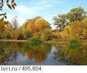 Купить «Осенний ерек», фото № 495804, снято 5 октября 2008 г. (c) Пичугина Виктория / Фотобанк Лори