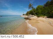 Купить «Тропический пейзаж», фото № 500452, снято 18 марта 2008 г. (c) Алексей Корсаков / Фотобанк Лори
