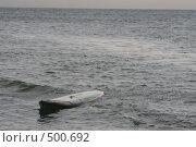 Доска для плавания в волнах. Стоковое фото, фотограф Андрей Гривцов / Фотобанк Лори
