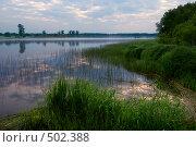 Купить «На берегу озера ранним пасмурным утром», фото № 502388, снято 21 июня 2008 г. (c) Дмитрий Яковлев / Фотобанк Лори