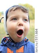 Купить «Радостный малыш», фото № 511664, снято 3 октября 2008 г. (c) Игорь Романов / Фотобанк Лори