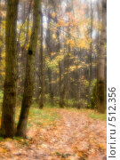 Купить «Тропинка в осеннем лесу», фото № 512356, снято 17 октября 2008 г. (c) Малютин Павел / Фотобанк Лори