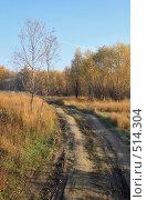 Осенняя дорога. Стоковое фото, фотограф Круглов Олег / Фотобанк Лори