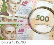 Купить «500 гривен», фото № 515700, снято 10 октября 2008 г. (c) Buka / Фотобанк Лори