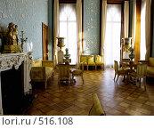 Голубая комната в Воронцовском дворце (2007 год). Редакционное фото, фотограф Миронова Евгения / Фотобанк Лори