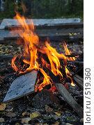 Купить «Костер», фото № 519360, снято 20 сентября 2008 г. (c) Стучалова Наталия / Фотобанк Лори
