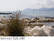Купить «Морской берег», фото № 520340, снято 21 сентября 2008 г. (c) Asja Sirova / Фотобанк Лори