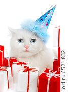 Купить «Кот среди подарков», фото № 521832, снято 20 октября 2008 г. (c) Андрей Армягов / Фотобанк Лори