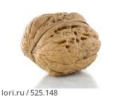 Купить «Грецкий орех», фото № 525148, снято 21 октября 2008 г. (c) Артем Ефимов / Фотобанк Лори