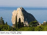 Купить «Скалы в Крыму», фото № 525292, снято 1 мая 2008 г. (c) Argument / Фотобанк Лори