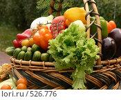 Купить «Овощи», фото № 526776, снято 23 августа 2008 г. (c) Глеб Тропин / Фотобанк Лори