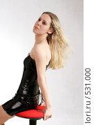 Купить «Портрет красивой девушки», фото № 531000, снято 17 мая 2008 г. (c) Варвара Воронова / Фотобанк Лори
