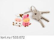 Купить «Брелок корова и бычок с ключами от новой квартиры», эксклюзивное фото № 533072, снято 29 октября 2008 г. (c) Александр Щепин / Фотобанк Лори