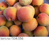 Купить «Спелые абрикосы», фото № 534556, снято 8 июля 2007 г. (c) Роман Мельник / Фотобанк Лори